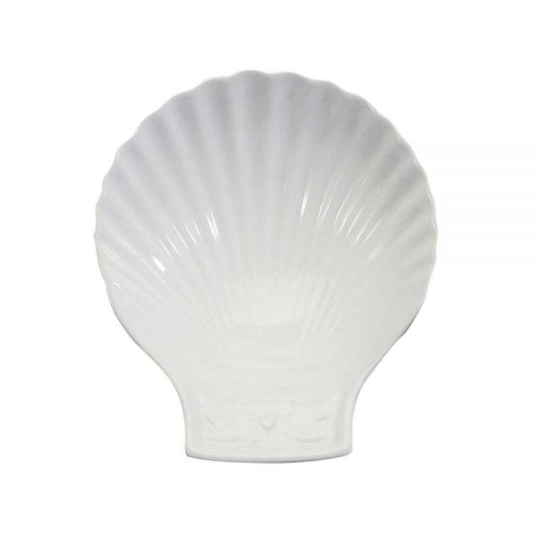 Coquille porcelaine